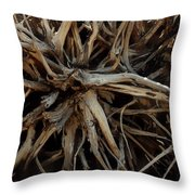 Rooty Throw Pillow