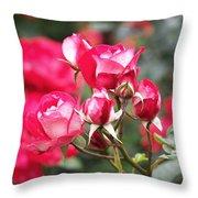 Rosa Molly Mcgredy Throw Pillow