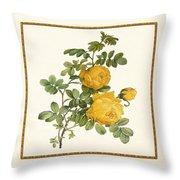Rosa Sulfurea -yellow Rose  Square Throw Pillow