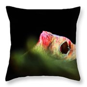 Rose 006 Throw Pillow