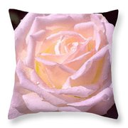 Rose 169 Throw Pillow