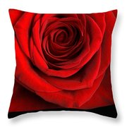 Rose 2 I Love You Throw Pillow