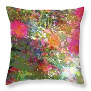 Rose 207 Throw Pillow by Pamela Cooper