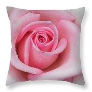 Rose 22 Throw Pillow