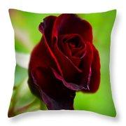 Rose 3 Throw Pillow