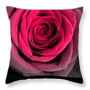 Rose 33 Love Throw Pillow