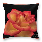 Rose 50 Throw Pillow