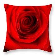 Rose 6 I Love You Throw Pillow