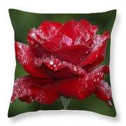 Rose 9 Throw Pillow