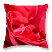 Rose Abstract Throw Pillow