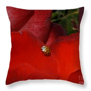 Rose And Ladybug Throw Pillow
