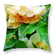 Rose And Leaves On A Rainy Day Throw Pillow