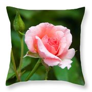 Rose And Raindrops Throw Pillow