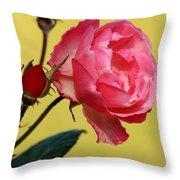 Rose And Rose Buds Throw Pillow