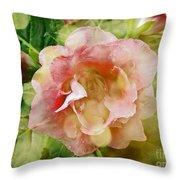 Rose Begonia In Pink Throw Pillow