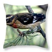 Rose-breasted Grosbeak - Profile Throw Pillow