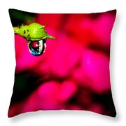 Rose Bud After Rain Throw Pillow