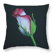Rose Bud Throw Pillow