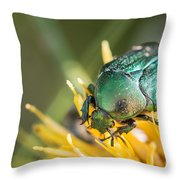 Rose Chafer Throw Pillow