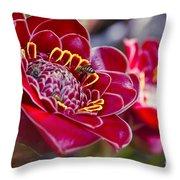 Rose De Porcelaine Throw Pillow