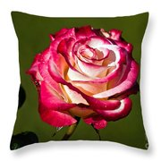 Rose Dick Clark Throw Pillow