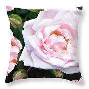 Rose Encounters Throw Pillow