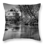 Rose Farm Black And White Throw Pillow