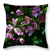 Rose Garden 2 Throw Pillow