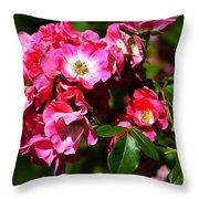 Rose Garden 4 Throw Pillow