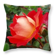 Rose Garden Red Square-3 Throw Pillow by Janice Sakry