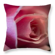 Rose -gentleness Throw Pillow
