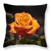 Rose Glow Throw Pillow