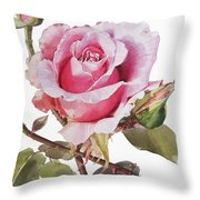 Watercolor Of Pink Rose Grace Throw Pillow