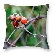 Rose Hip Wet Throw Pillow