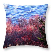 Rose Hips By The Seashore Throw Pillow