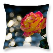 Rose In Dappled Afternoon Light Throw Pillow