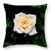 Rose In The Rain Throw Pillow