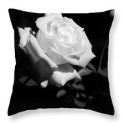 Rose - Infrared Throw Pillow