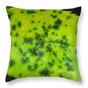Rose Leaf Throw Pillow by Sonali Gangane