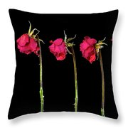 Rose Lineup Throw Pillow