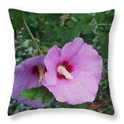 Rose Mallow Throw Pillow