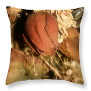 Rose Of Old Throw Pillow