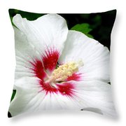 Rose Of Sharon # 1 Throw Pillow