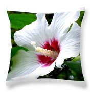 Rose Of Sharon # 2 Throw Pillow