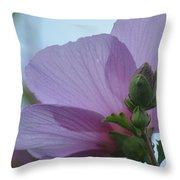 Rose Of Sharon 14-2 Throw Pillow