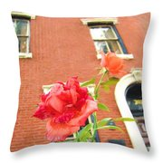 Rose On Brownstone Throw Pillow