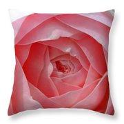 Rose Opening Throw Pillow