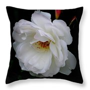 Rose Perfection Throw Pillow