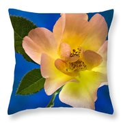 Rose Portrait Throw Pillow