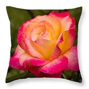 Rose Rainbow Sorbet Throw Pillow